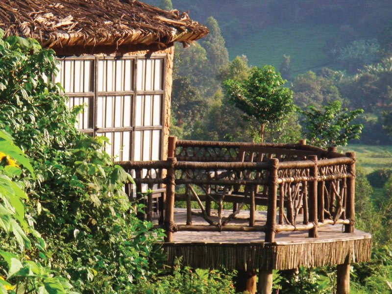MAHOGANY SPRING LODGE, Bwindi