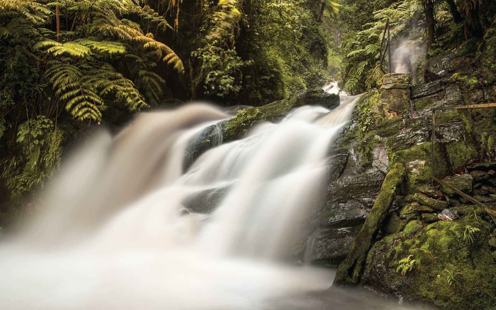Nyungwe Forest Falls